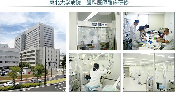 東北大学病院 歯科医師臨床研修