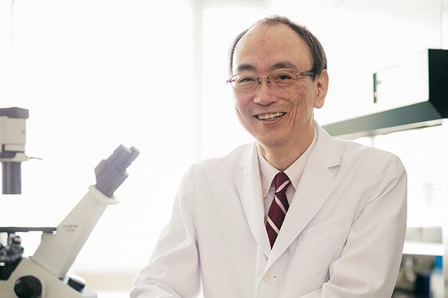 EBウイルス感染症による白血病・リンパ腫治療薬候補の非臨床試験
