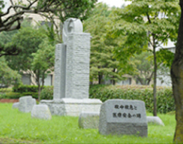 Monument for Critical Care and Medical Safety